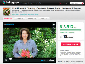 Click to contribute to Debra's Slow Flowers campaign.