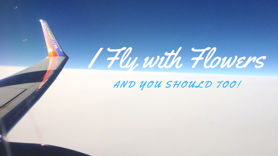i-fly-with-flowers